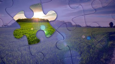 Learn Agricultural Economic Modeling Tools online by edX