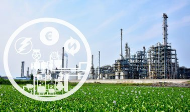 Learn Biorefinery: From Biomass to Building Blocks of Biobased Products online by edX