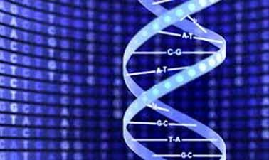 Learn Introduction to Biology - The Secret of Life online by edX