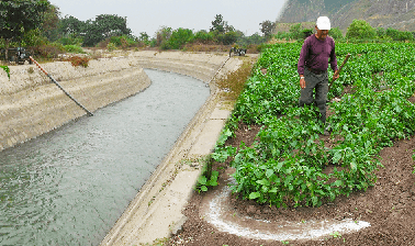 Learn Irrigation Efficiency: more food with less water online by edX