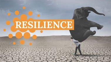 Learn Resilience - The art of coping  with disasters online by edX