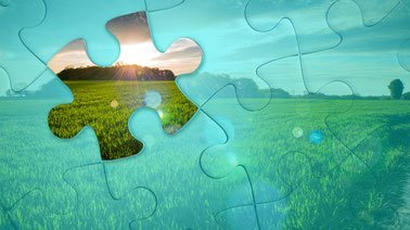 Learn Sustainable Agribusiness Comprehensive Exam online by edX