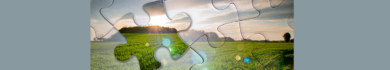 Learn Sustainable Agribusiness online by edX