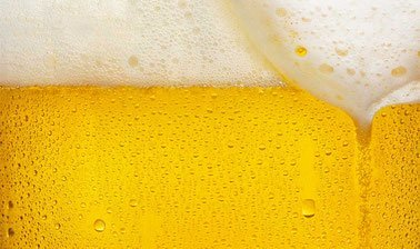 Learn The Science of Beer online by edX