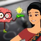 Ace any examination using whole brain Learning | Teaching & Academics Online Education Online Course by Udemy