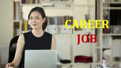 Professional Certificate in Successful Career Practitioner | Personal Development Career Development Online Course by Udemy