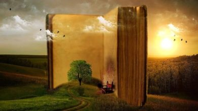 45 Day Novel (The Prolific Writer Academy)   Personal Development Creativity Online Course by Udemy