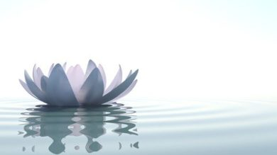 Mindfulness 101 | Personal Development Personal Transformation Online Course by Udemy