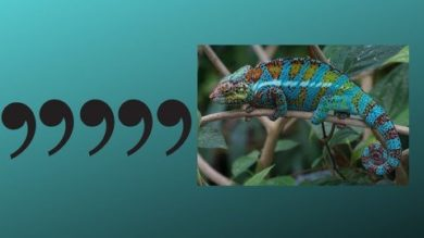 Master the Comma | Personal Development Career Development Online Course by Udemy