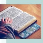 Simple Bible Study for Beginners | Personal Development Religion & Spirituality Online Course by Udemy