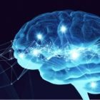 Master Your Mind(set) | Personal Development Personal Productivity Online Course by Udemy