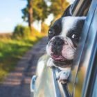 Healing Driving Anxiety with Driving Anxiety Meditations | Personal Development Stress Management Online Course by Udemy