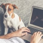 Renda Online em Home Office | Personal Development Personal Productivity Online Course by Udemy