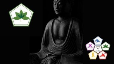 Guided Meditation and Wisdom Teaching | Personal Development Personal Transformation Online Course by Udemy