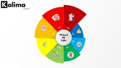 wheeloflife | Personal Development Personal Transformation Online Course by Udemy