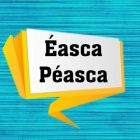 asca Pasca | Teaching & Academics Language Online Course by Udemy