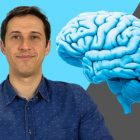 Psychology for Executive and Career Coaching Professionals | Personal Development Personal Productivity Online Course by Udemy