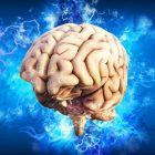 The Infinite Mind: Become grandmaster in memorizing   Personal Development Memory & Study Skills Online Course by Udemy