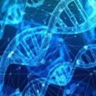 Basics of Molecular Genetics and Molecular Biology | Teaching & Academics Science Online Course by Udemy