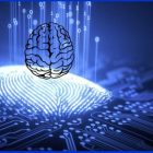 The beginners course to understand The Brain Design | Personal Development Happiness Online Course by Udemy
