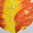 Learn to Paint Dew Drops on Autumn Leaf in Watercolor | Teaching & Academics Other Teaching & Academics Online Course by Udemy