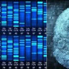 DNA and Fingerprint Evidence & Identification | Teaching & Academics Online Education Online Course by Udemy