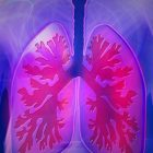Breathing and Respiration | Teaching & Academics Science Online Course by Udemy