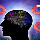 program-yr-mind-for-loa | Personal Development Personal Transformation Online Course by Udemy
