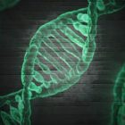 Molecular Biology: From Nucleotide To Nucleic Acid | Teaching & Academics Science Online Course by Udemy