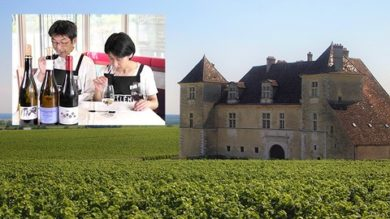 vin-nature-bourgogne | Lifestyle Other Lifestyle Online Course by Udemy