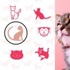 Communicating with your cat | Lifestyle Pet Care & Training Online Course by Udemy