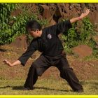 ESPGZA - Introduccin a PiGua Zhang | Health & Fitness Self Defense Online Course by Udemy