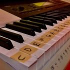 Music Theory Fundamentals for Songwriting | Music Music Fundamentals Online Course by Udemy