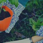 Urban Homesteading 101 | Lifestyle Other Lifestyle Online Course by Udemy