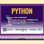 Web Scrapping and Data Visualisation with Python | Development Programming Languages Online Course by Udemy