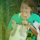 Reactive Rover - Reactive Dog Behaviour Training | Lifestyle Pet Care & Training Online Course by Udemy