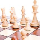Chess For Beginners - Complete Guide | Lifestyle Gaming Online Course by Udemy
