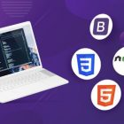 Full Stack Web Development 2021 Guide with NodeJS & MongoDB | Development Web Development Online Course by Udemy