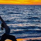 14 Days to a Healthy Back | Health & Fitness General Health Online Course by Udemy