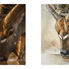 Nyala Head in Pen and Ink with Watercolour Washes | Lifestyle Arts & Crafts Online Course by Udemy